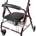 Comprar on-line andador asiento al mejor precio