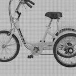 Lo mejor en triciclos adultos deportivo tumbado – Comparativas